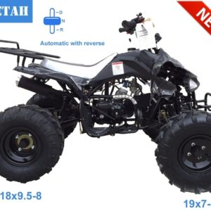 Cheetah ATV